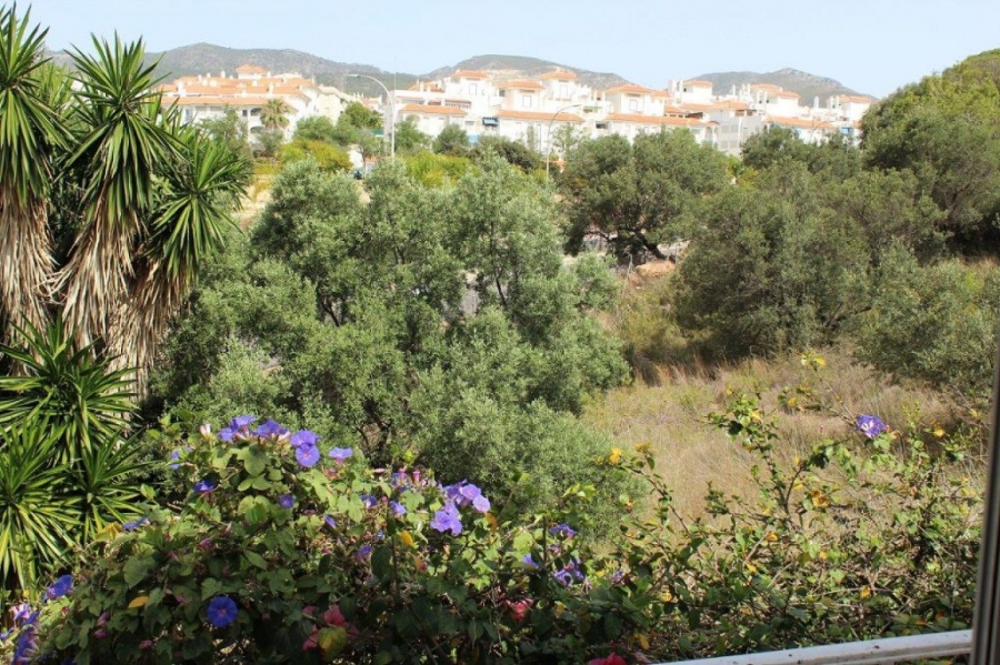 Bed and breakfast opportunity in Torremolinos (Montemar near Carihuela Beach)