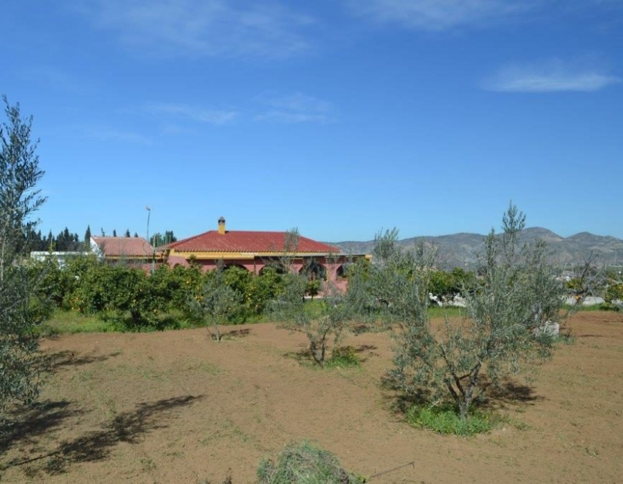 Finca in Alhaurin de la Torre for sale